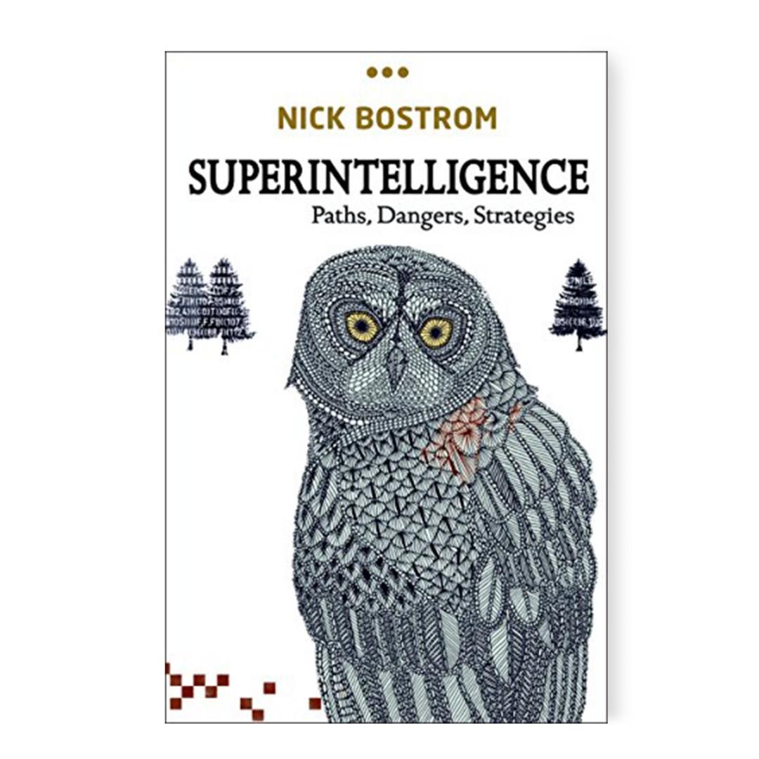 Amazon.com: Superintelligence: Paths, Dangers, Strategies eBook: Bostrom, Nick: Kindle Store