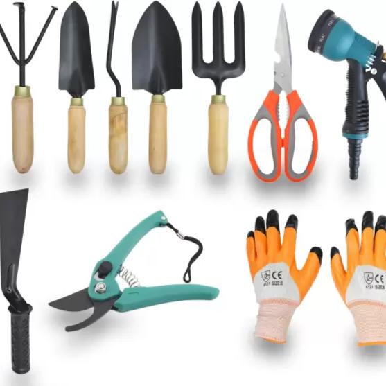 10 Pieces Gardening Tool Set